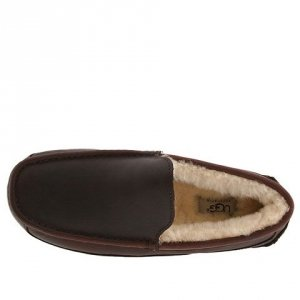 UGG Mens Ascot Metallic - Chocolate